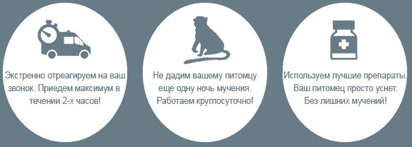 Кремация экзотических животных