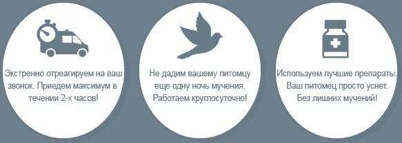 Кремация птиц