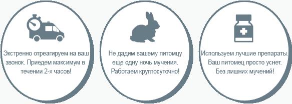 Усыпление кроликов