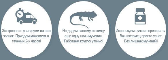Усыпить Рептилию